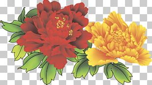 Floral Design Moutan Peony Cut Flowers Pink Flowers PNG
