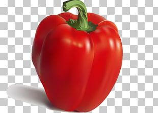 Nutrient Pimiento Bell Pepper Food Vegetable PNG