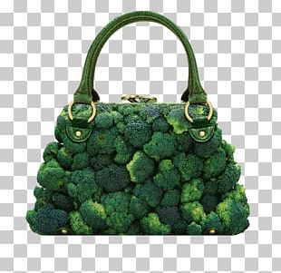 Photographer Handbag Photography Fashion Accessory Graphic Designer PNG