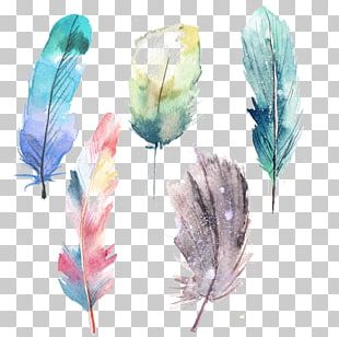 Feather Watercolor Painting Blue PNG