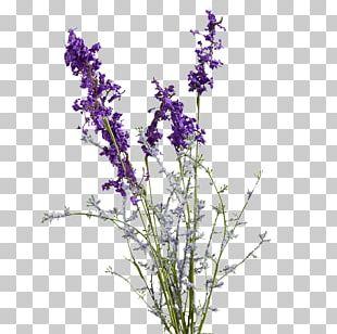English Lavender Purple Artificial Flower Violet PNG