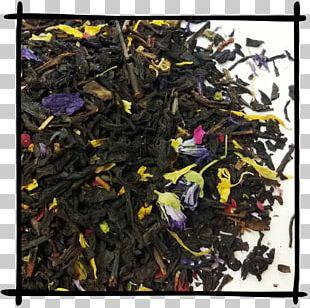 Nilgiri Tea Oolong Tea Plant Scrap PNG