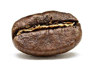 Arabica Coffee Coffee Bean Coffee Roasting PNG