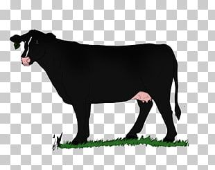 Sheep Dairy Cattle Ox Goat PNG