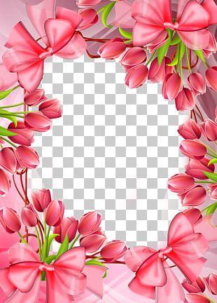 Frame Rose Pink Flowers Tulip PNG