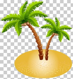 Image File Formats Plant Stem Palm Tree PNG