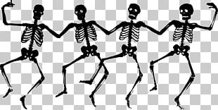 Skeleton Free Content PNG
