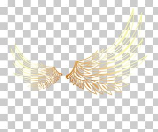 Yellow Feather Pattern PNG