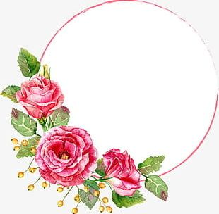 Red Flower Circle PNG