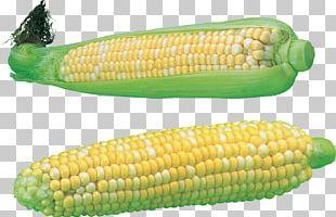 Corn PNG