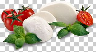 Italian Cuisine Mozzarella Pizza Milk Cheese PNG