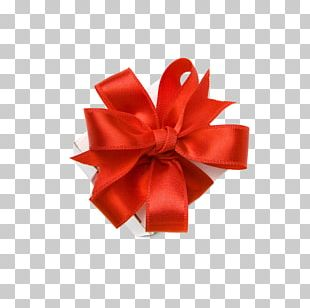 Gift Ribbon Decorative Box Valentines Day Stock.xchng PNG