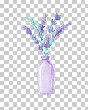 Lavender Drawing PNG