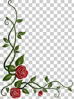 Garden Roses Floral Design Flower Decorative Arts PNG