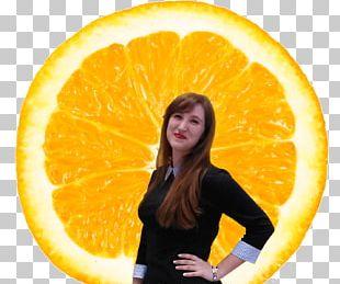 Orange Juice Orange Drink Smoothie PNG