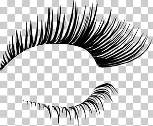 Eyelash Extensions Cosmetics PNG