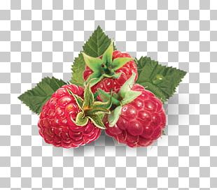 Strawberry Stock Photography Red Raspberry Food PNG