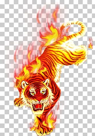 Tiger Flame Fire PNG