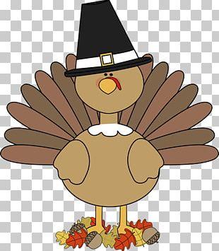 Turkey Thanksgiving PNG