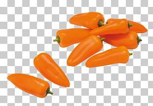 Habanero Bell Pepper Serrano Pepper Tabasco Pepper Vegetarian Cuisine PNG
