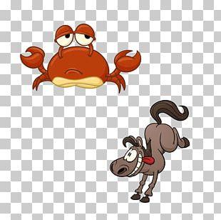 Crab Cartoon Drawing Illustration PNG