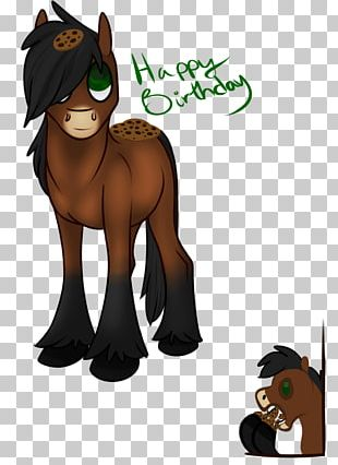 Cat Mustang Pony Pack Animal Mammal PNG