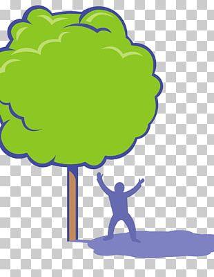 Shade Tree PNG