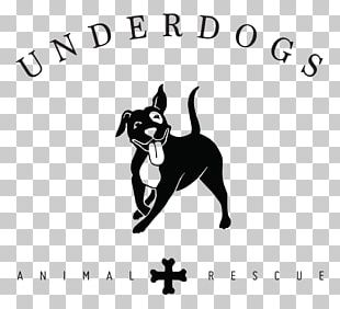 Boston Terrier Cat Desktop Animal Rescue Group PNG