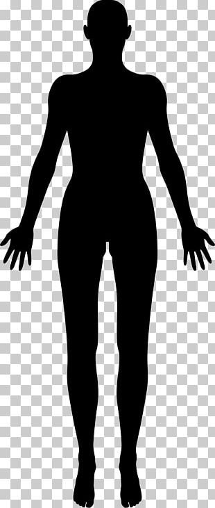 Female Body Shape Human Body Silhouette PNG