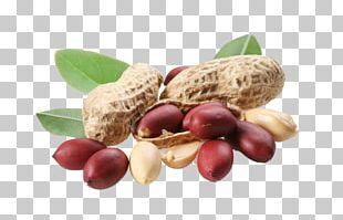 Peanut Oil Food PNG