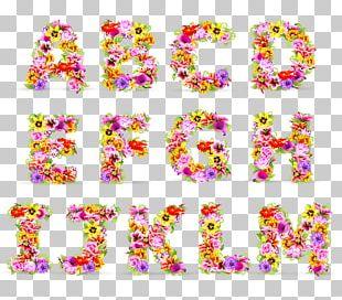 Letter Flower English Alphabet PNG