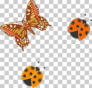 Monarch Butterfly Insect Butterfly Effect PNG