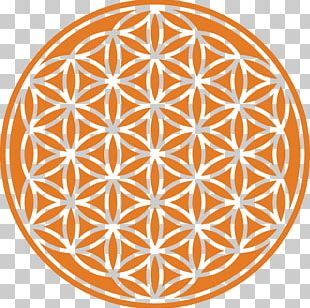 Overlapping Circles Grid Sacred Geometry Art Drawing PNG