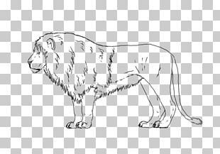 Lion Dog Breed Cat Line Art PNG