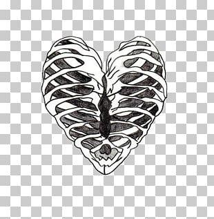 Heart Rib Cage Human Skeleton Drawing PNG