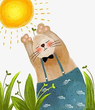 Kitten Under The Sun PNG