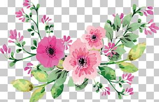 Romantic Watercolor Flowers PNG