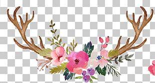 Reindeer Antler Wedding Invitation Flower PNG