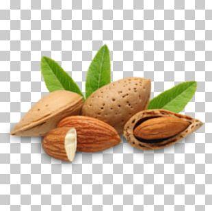 Almond Oil Carrier Oil Almond Milk PNG