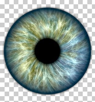 Human Eye Pupil Iris PNG, Clipart, Brown, Circle, Close Up