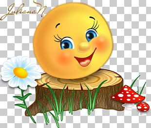 Emoticon Smiley Happiness Face PNG