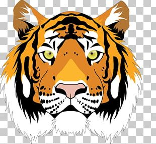 Tiger Cat Roar Mammal Whiskers PNG