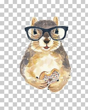 Squirrel Watercolor Painting Nerd Glasses PNG