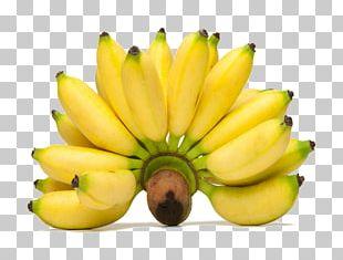 Pisang Goreng Lady Finger Banana Fritter Saba Banana PNG