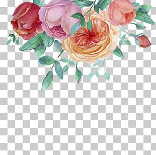 Watercolor Painting Flower Garden Roses PNG