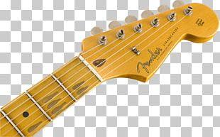 Fender Musical Instruments Corporation Fender Stratocaster Fender Telecaster Thinline Fender Eric Clapton Stratocaster PNG