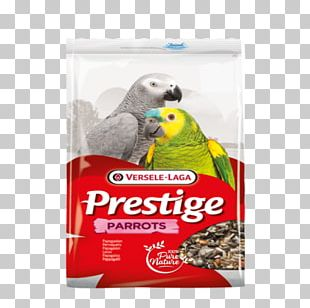 Budgerigar Parrot Bird Versele Laga Prestige Parakeets Mixture Of Seeds Domestic Canary PNG