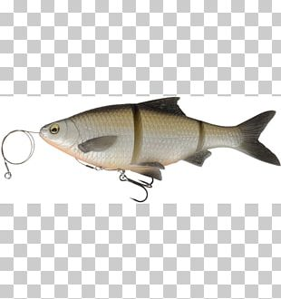 Fishing Baits & Lures Soft Plastic Bait Northern Pike PNG