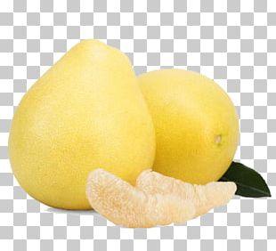 Sweet Lemon Pomelo Citrus Junos Grapefruit PNG