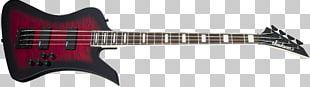 Acoustic-electric Guitar Bass Guitar Jackson Guitars Double Bass PNG